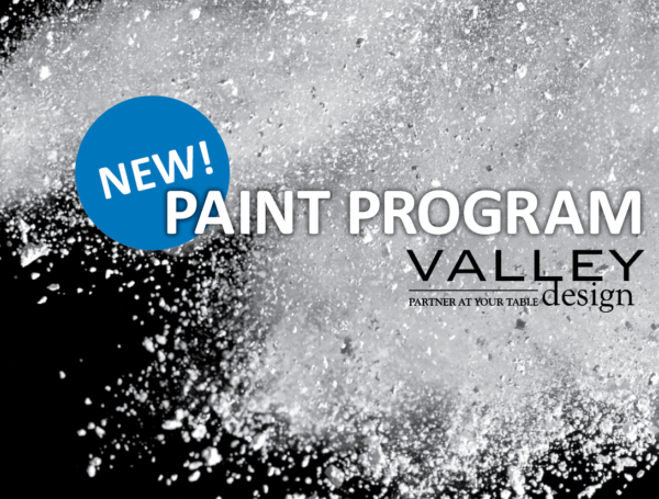 Introducing the 2020 Paint Program
